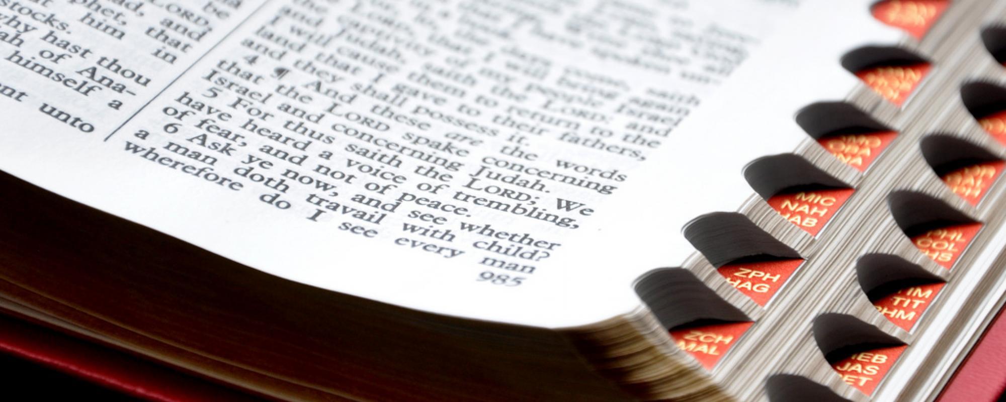 close up image a bible scriptures